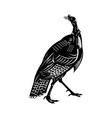 wild turkey done in retro style vector image vector image