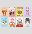 cats cards cartoon cute kittens lovly pats vector image vector image