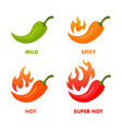 hot chili with flames set images vector image