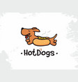 modern professional sign logo hot dogs vector image