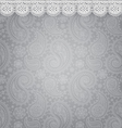 Patterned background with lace vector image vector image