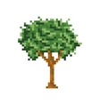 Pixel art tree isolated icon vector image vector image