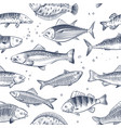 sketch fishes seamless pattern etched ocean fish vector image vector image