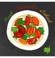 Tomato Salad Image vector image