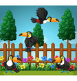 Toucans flying in the garden vector image vector image