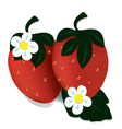 two ripe red strawberries vector image vector image