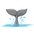 A tail of a whale vector image vector image
