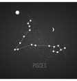 Astrology sign Pisces on chalkboard background vector image