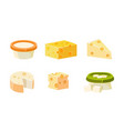 collection of cheese assortment various types vector image vector image