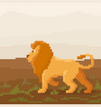 cute pixel lion is walking on a savanna vector image vector image