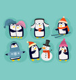 penguin christmas character vector image