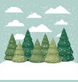 snowscape with pines scene vector image vector image
