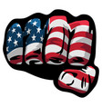 american flag fist vector image vector image