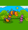 ant and caterpillar insect cartoon characters vector image vector image