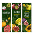 banners set for exotic fresh fruits menu vector image vector image