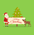 christmas banner in santas hand new year fir tree vector image