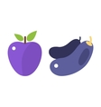 Eggplant and plum isolated vector image