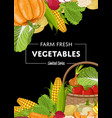 fresh farm food banner with vegetable vector image vector image