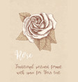 hand drawn rose on kraft paper in a retro style vector image