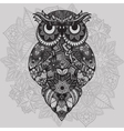 Patterned owl on the ornamental mandala vector image vector image