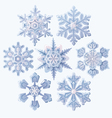 set ornate three dimensional snowflakes icons vector image vector image