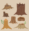 stacked wood pine timber for construction building vector image vector image