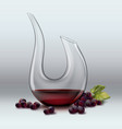 decanter and grape vector image