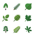 flat icon nature set of maple leaves foliage and vector image vector image