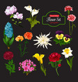 flower icon with bunch of spring flowering plant vector image