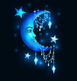halfmoon with human face and stars vector image