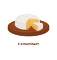 head of delicious camembert with cut triangular vector image vector image