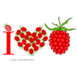 i love raspberries vector image vector image