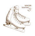 sketch os skates isolated on white background vector image vector image