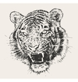tiger head engraving hand drawn sketch vector image vector image
