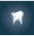 Tooth icon for dentists business vector image vector image