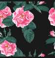 trendy floral background with rosa canina vector image vector image