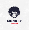 modern professional sign logo monkey energy vector image