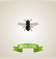 realistic fly element of vector image