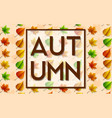 set of autumn leaves background vector image
