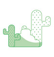 silhouette cactus plan with trees and ecological vector image