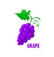 logo grape farm design vector image vector image