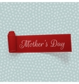 Mothers Day realistic scroll Ribbon vector image