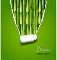 bamboo background with ripped paper vector image vector image