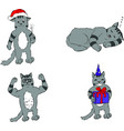 cat character storyboard digital vector image