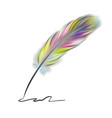colorful writing feather vector image