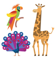 Exotic animals vector image