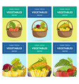 farm fresh vegetable label set vector image vector image