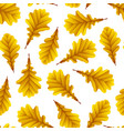 golden oak leaves isolated on white background vector image