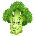 green broccoli vegetable vector image vector image