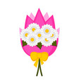 isolated bouquet of daisies vector image vector image